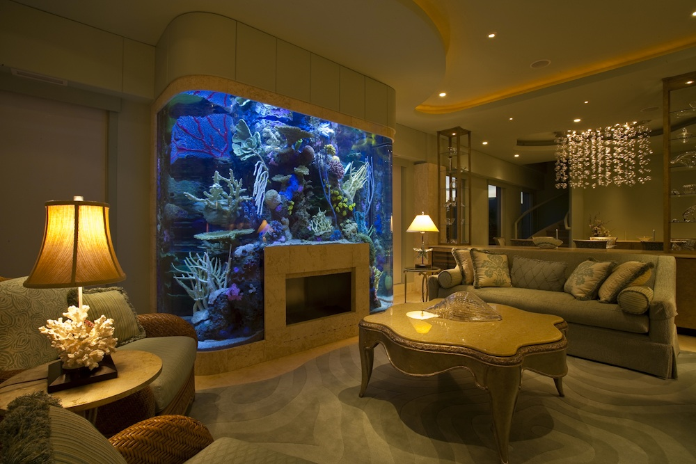 custom aquariums. Black Bedroom Furniture Sets. Home Design Ideas