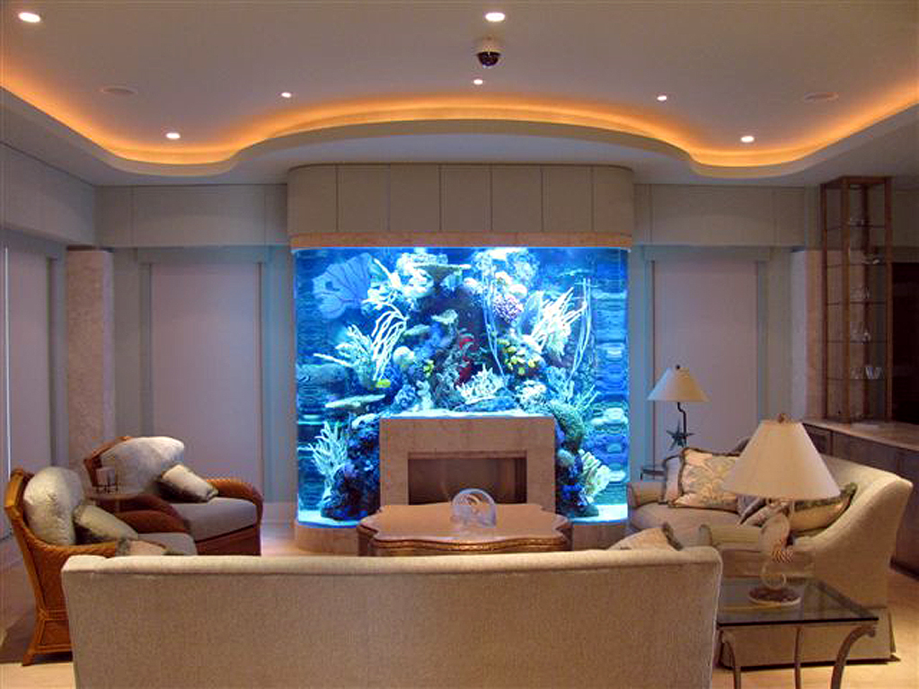 Custom Built Fish Tank Joy Studio Design Gallery - Best Design