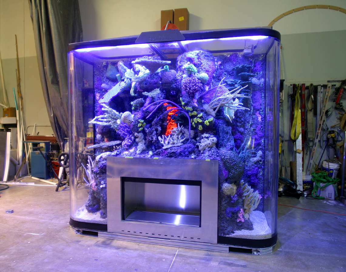 Design services for Aquarium design