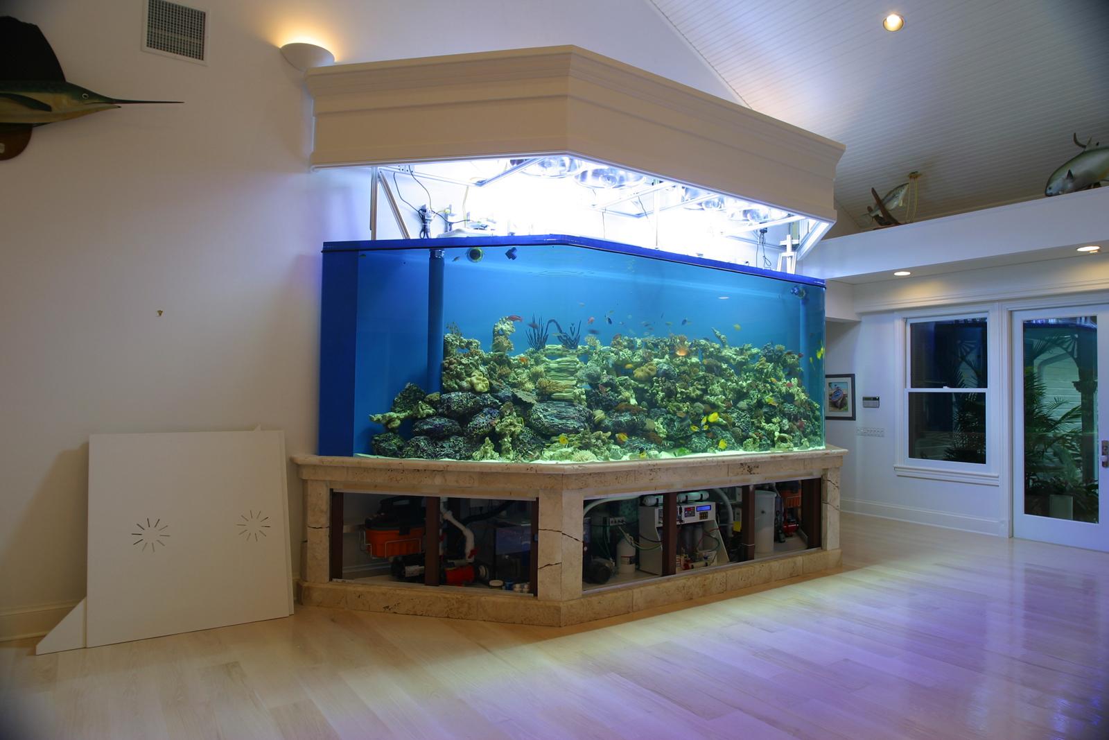 Aquarium fish tank manufacturers - See A Video Of This Aquarium Above