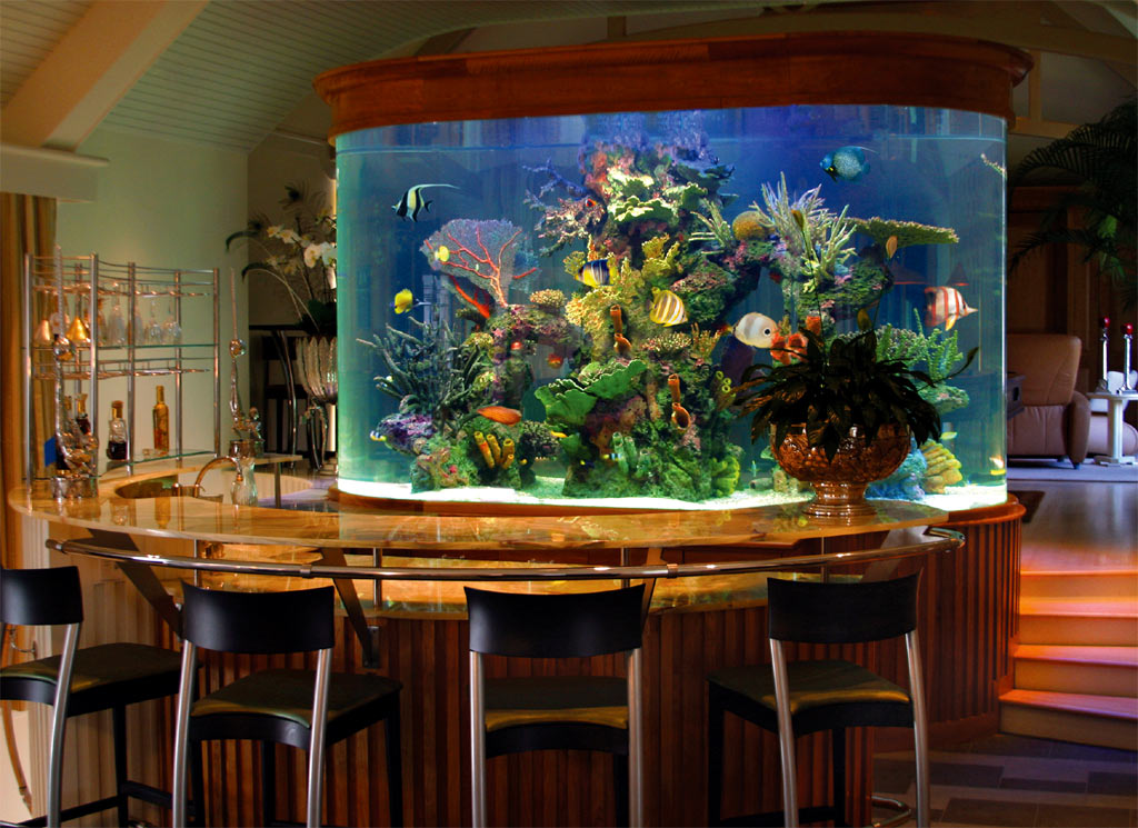Cool fish tanks large aquariums different types of for Aquarium house decoration