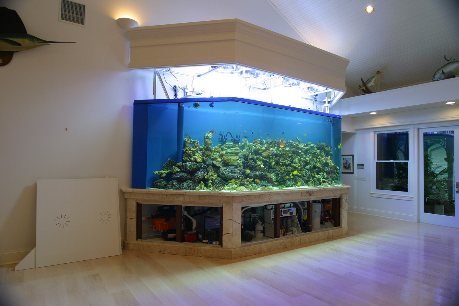 Floor To Ceiling Cylinder Fish Tank Taraba Home Review